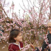 Foto von Sr. Johanna in Guatraché